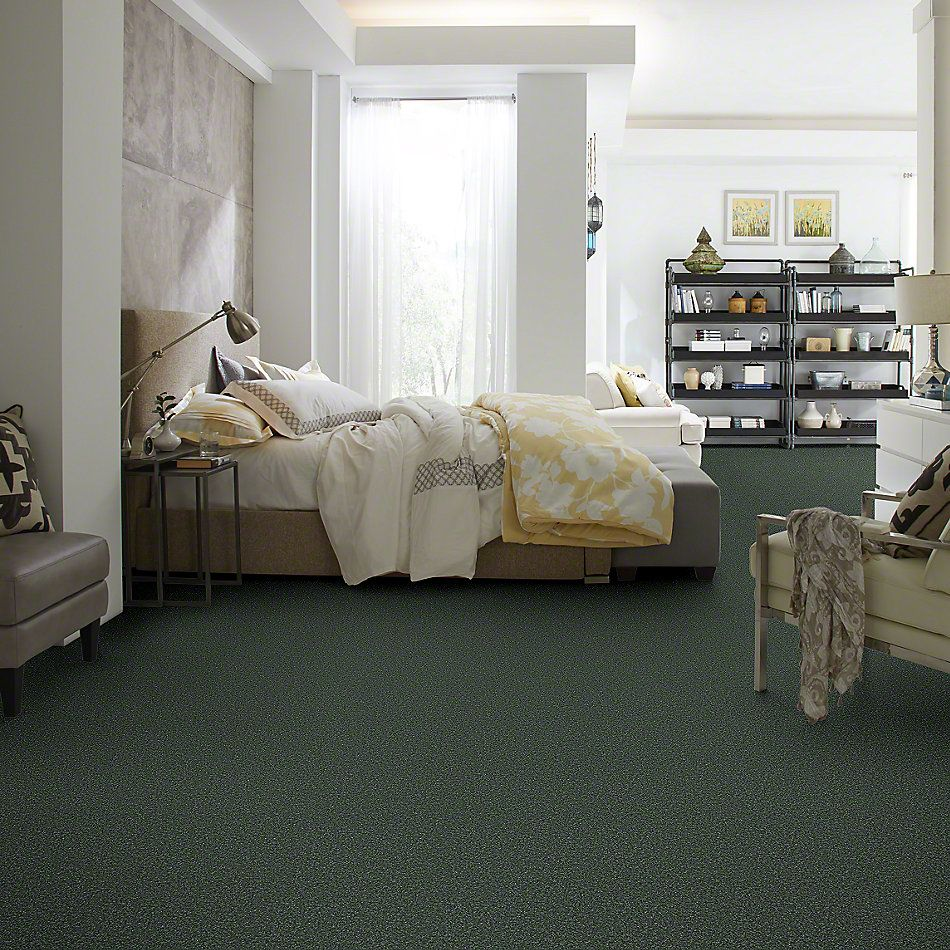 Shaw Floors Briceville Classic 12 Going Green 00340_E0951