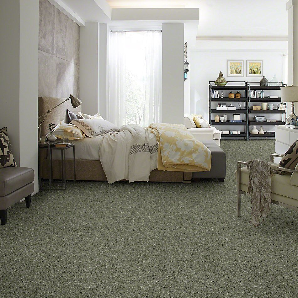 Shaw Floors Queen From The Heart II Surf 00344_E0132