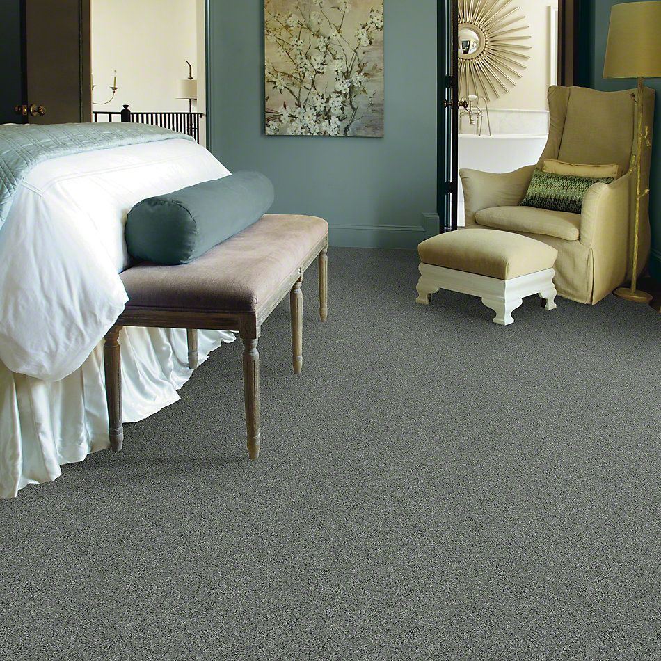 Shaw Floors My Choice II Silver Sage 00350_E0651