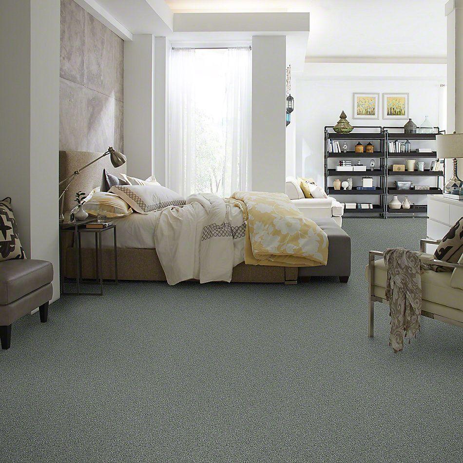 Shaw Floors SFA My Inspiration I Silver Sage 00350_EA559