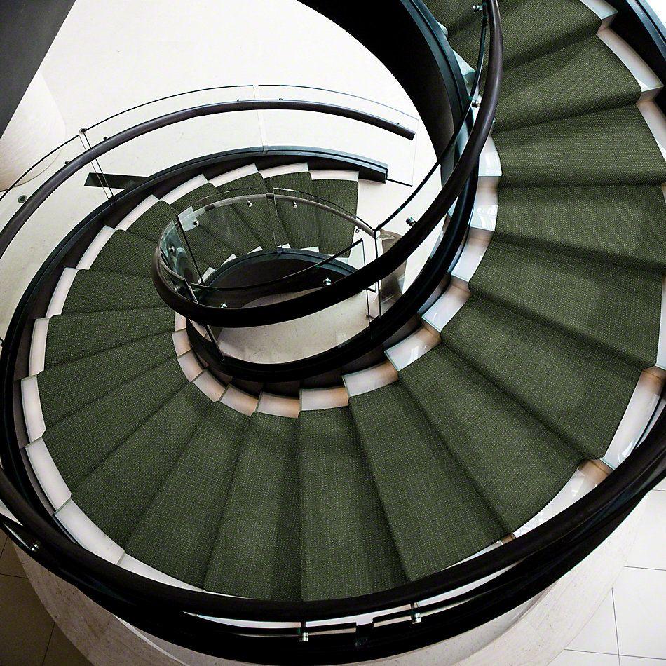Shaw Floors Shaw Flooring Gallery Inspired By Pattern Bay Laurel 00351_5563G