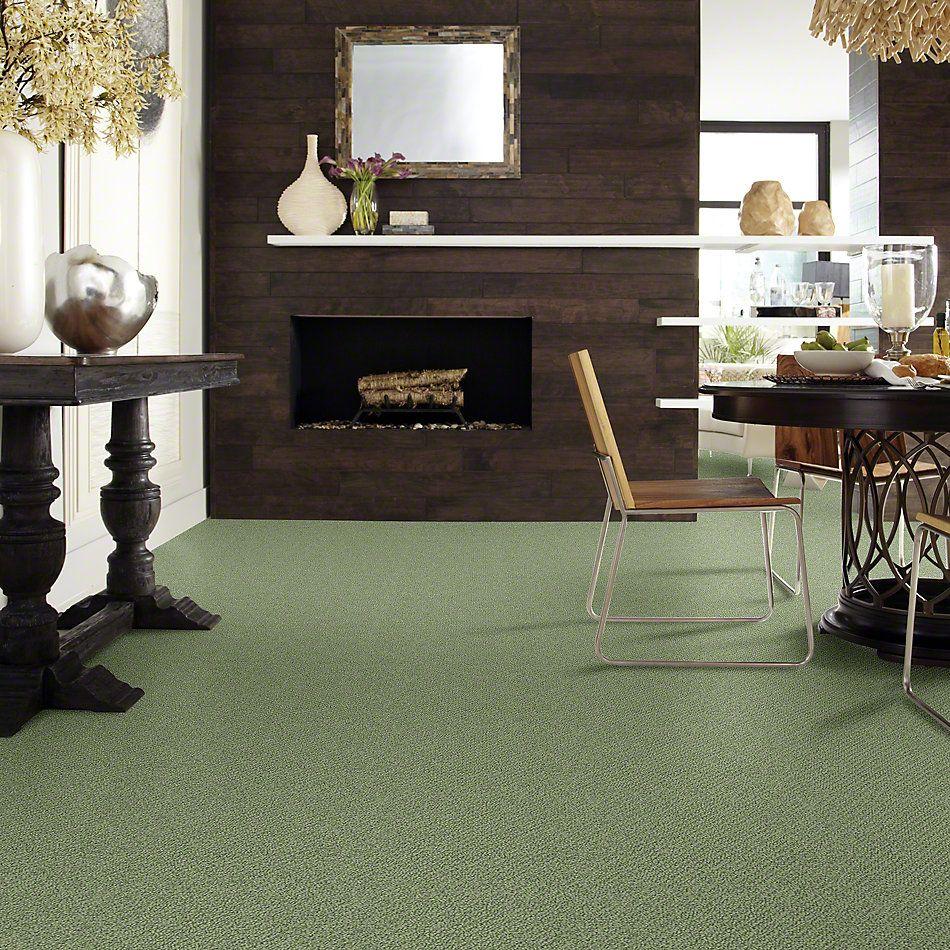 Shaw Floors Shaw Flooring Gallery Subtle Shimmer Loop Bay Laurel 00351_5568G