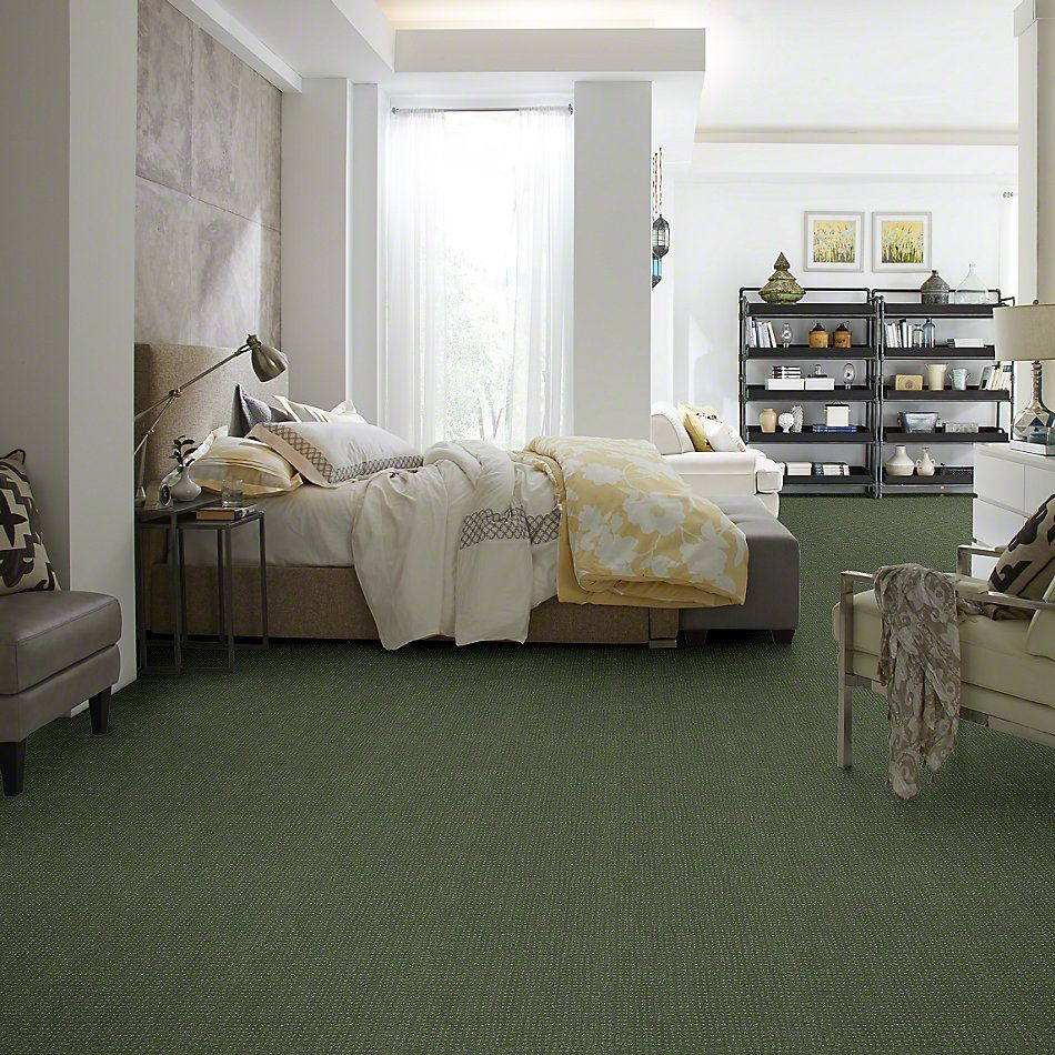 Shaw Floors My Choice Pattern Bay Laurel 00351_E0653