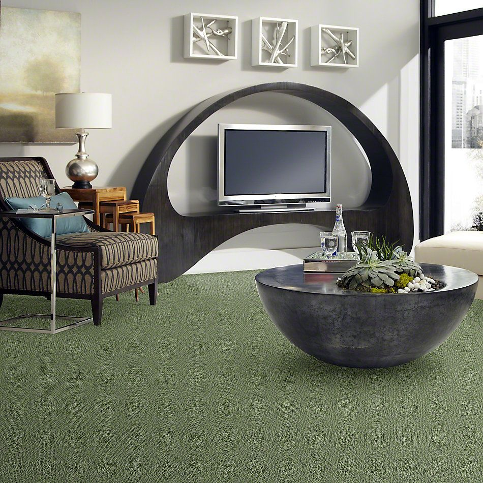 Shaw Floors Truly Relaxed Loop Bay Laurel 00351_E0657