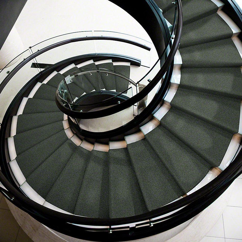 Shaw Floors SFA My Inspiration I Bay Laurel 00351_EA559