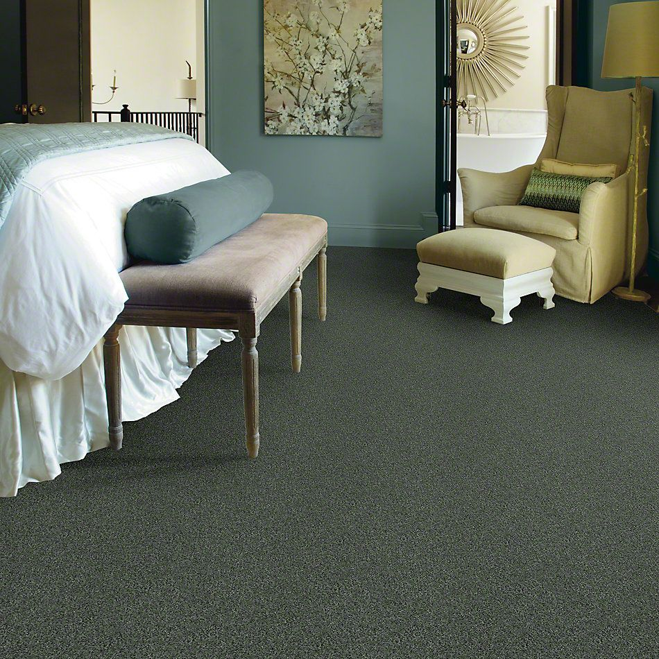 Shaw Floors SFA My Inspiration III Bay Laurel 00351_EA561