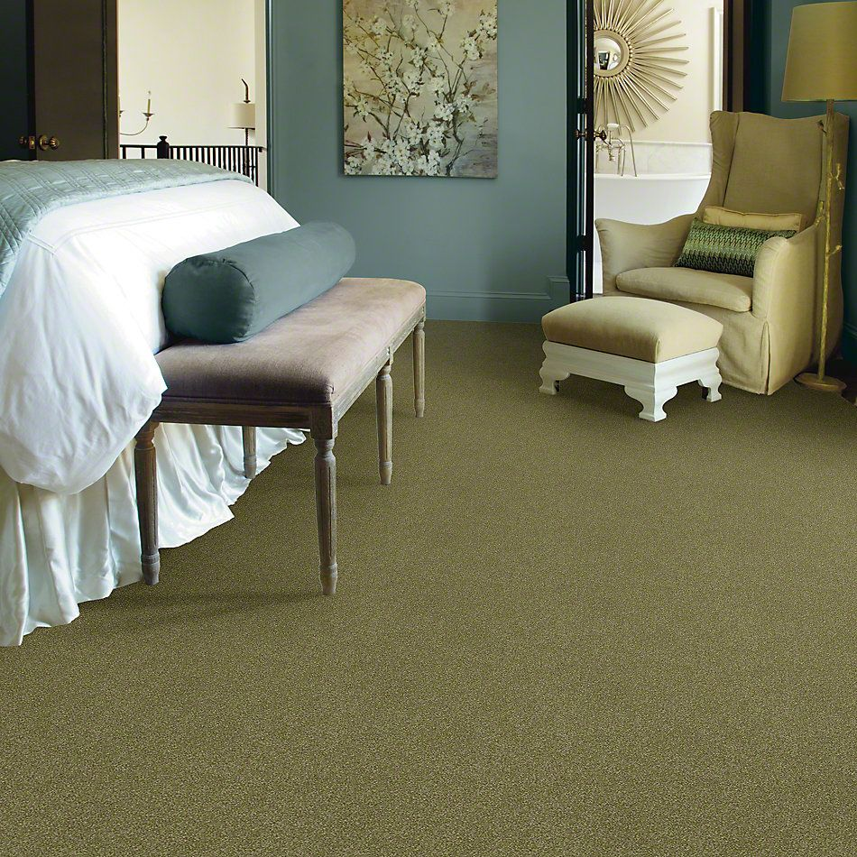 Shaw Floors Foundations Luxuriant Sea Grass 00361_E9253