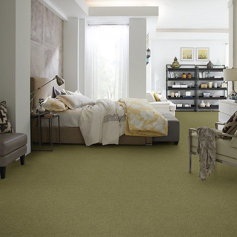 Shaw Floors Nfa Refinement Sea Grass 00361_NA151