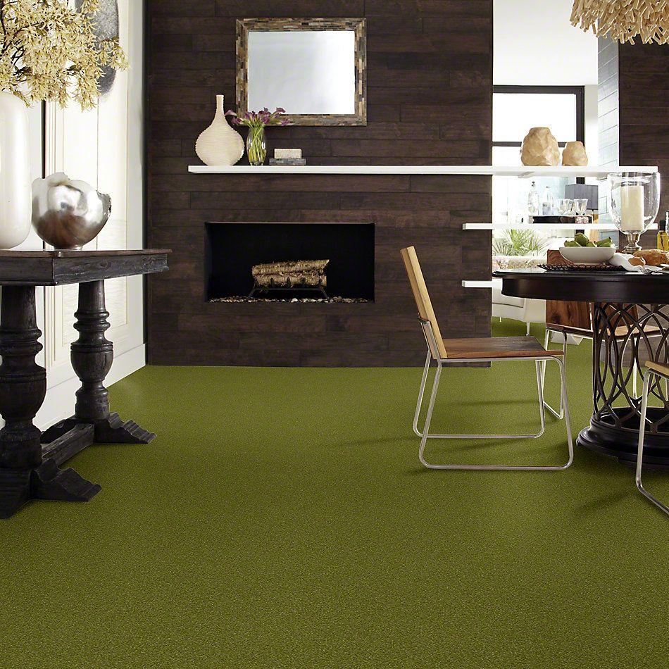Shaw Floors Foundations Luxuriant Moss Grove 00362_E9253