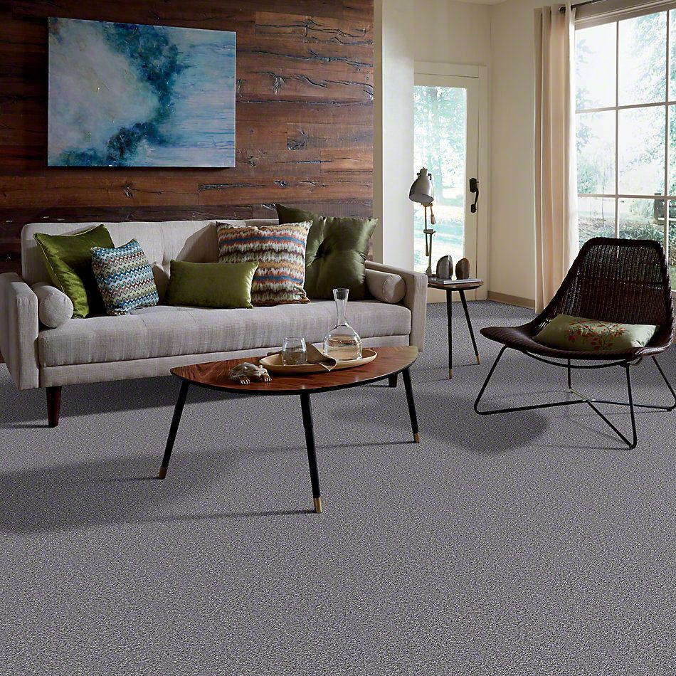 Shaw Floors Full Of Life Coastal Breeze 00400_52N09