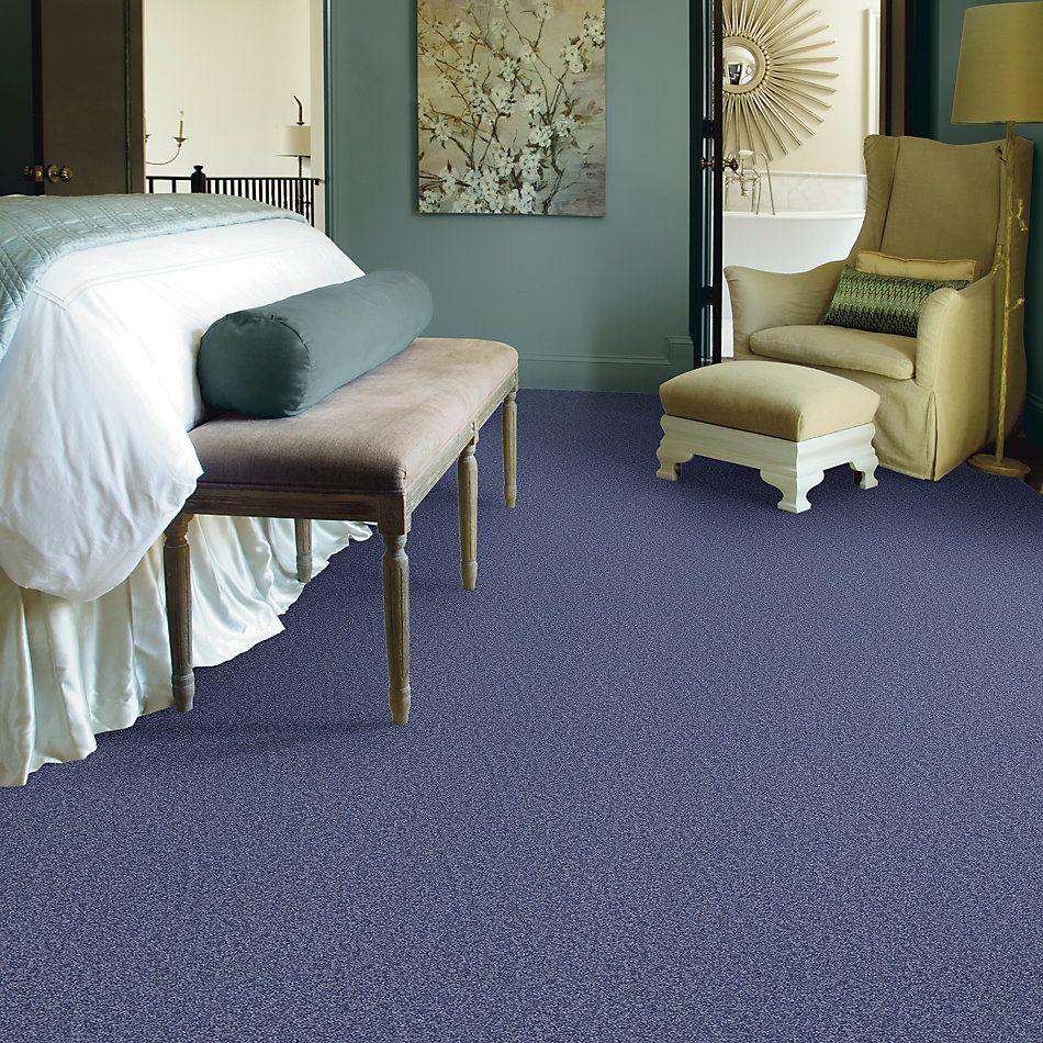 Shaw Floors Shaw Design Center Larimore 12′ Castaway 00400_5C577