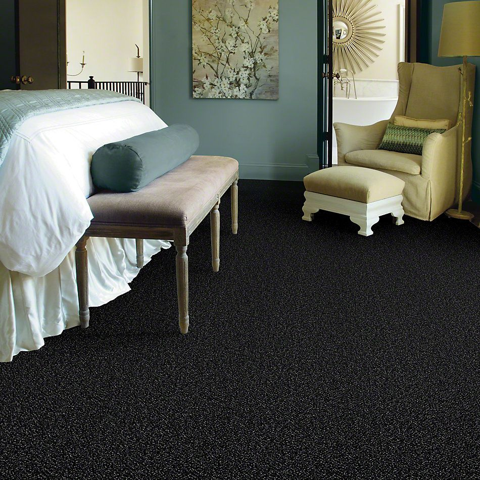 Shaw Floors Simply The Best Because We Can II 15 Under Water 00400_E9259