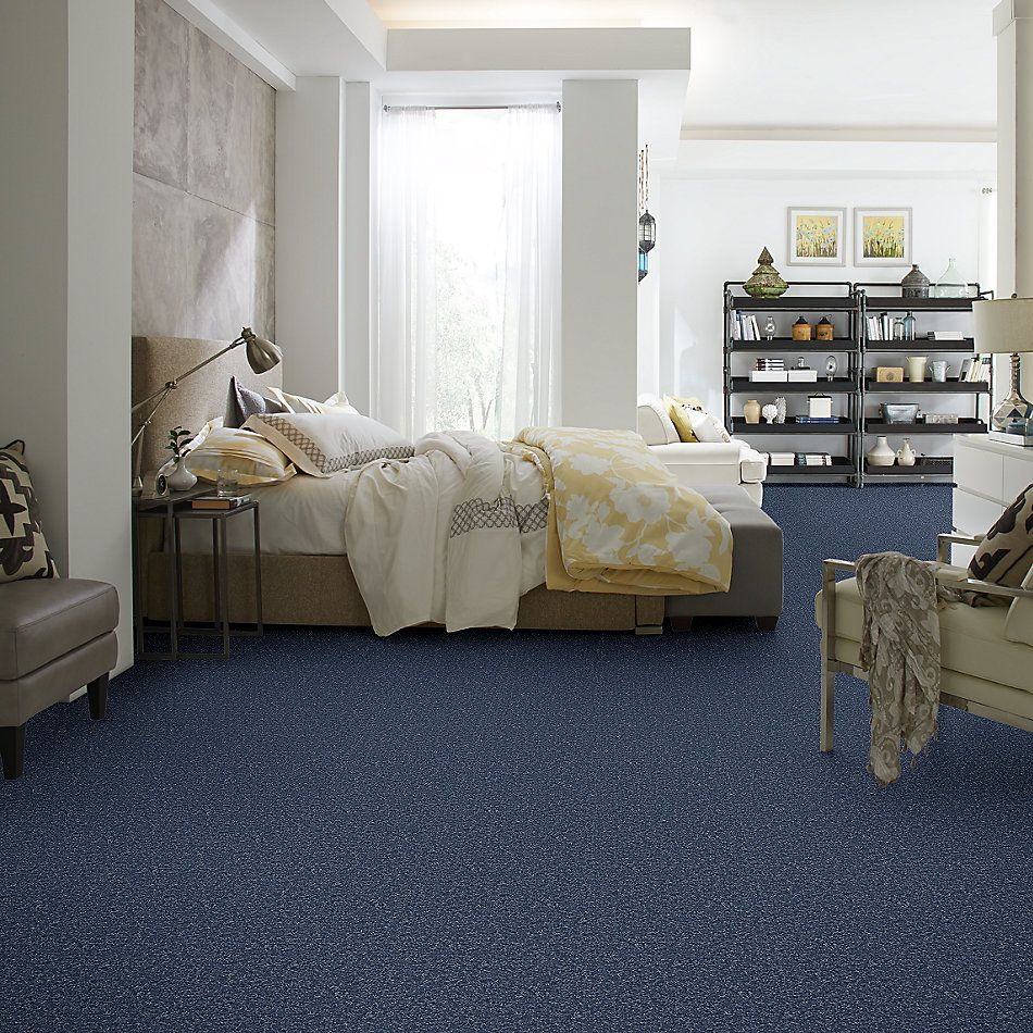 Shaw Floors Value Collections Full Court 15′ Net Castaway 00400_E9270