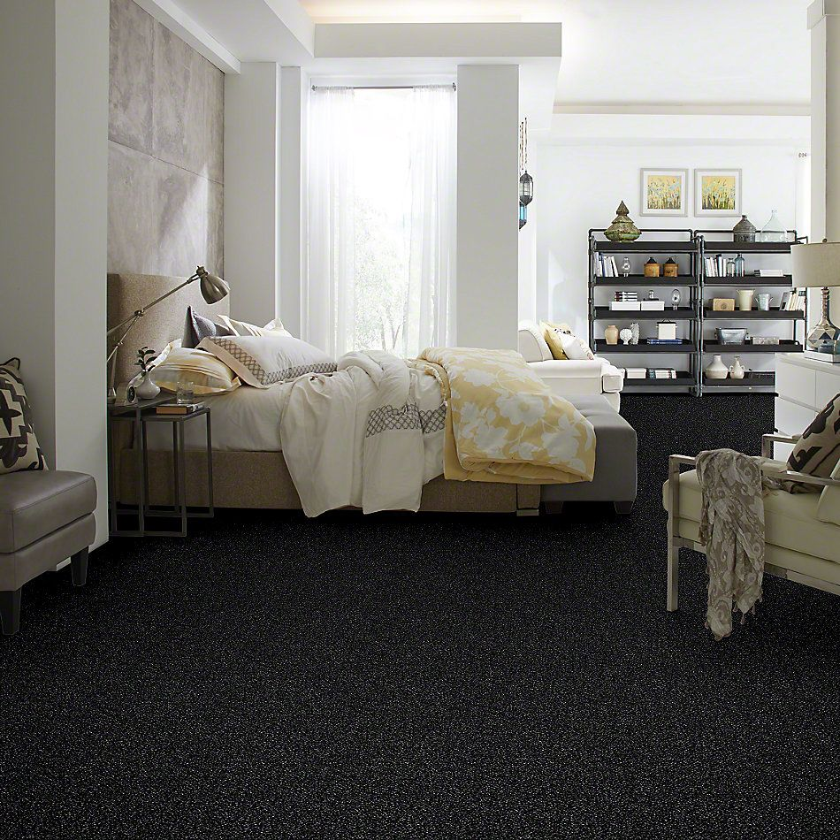 Shaw Floors Value Collections Because We Can I 12′ Net Under Water 00400_E9312