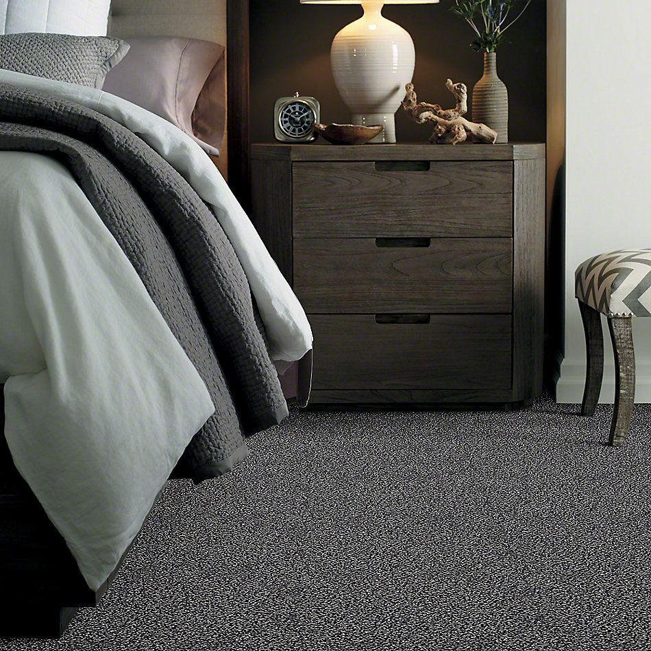 Shaw Floors Simply The Best Hypnotic Swan Lake E9347_00400