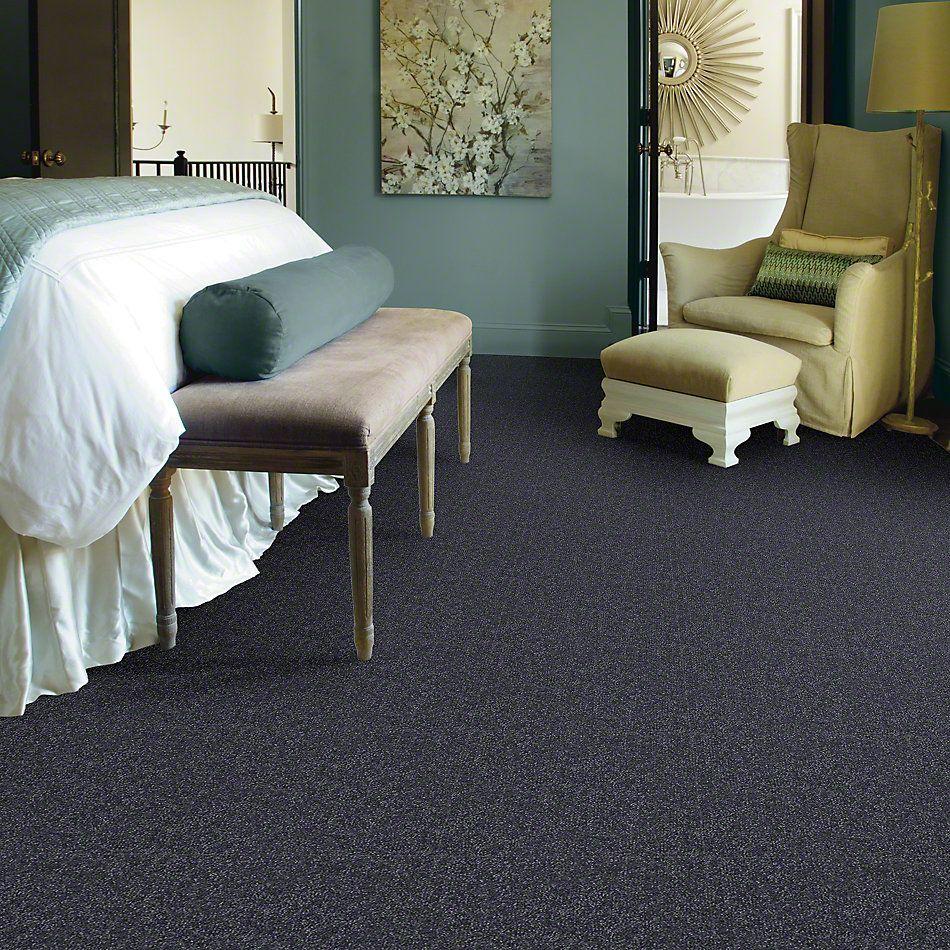 Shaw Floors Shaw Flooring Gallery Highland Cove III 15 Denim 00401_5224G
