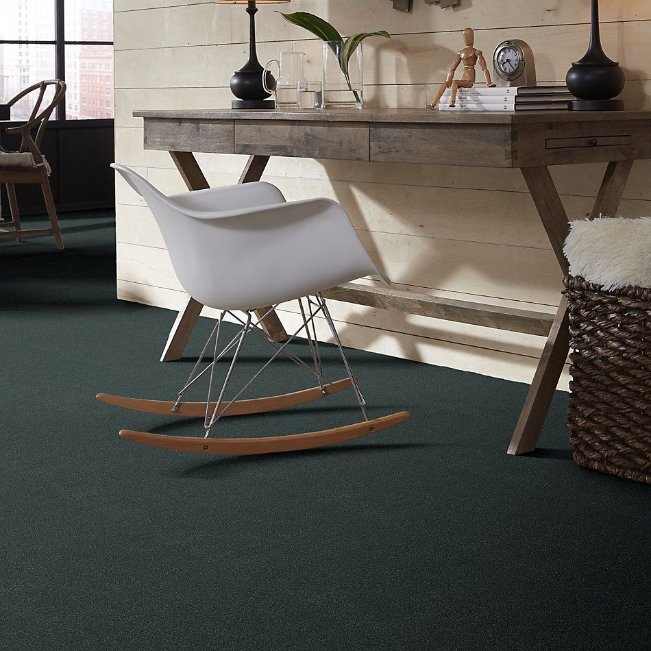 Shaw Floors Value Collections Sandy Hollow Cl III Net Cadet 00401_5E511