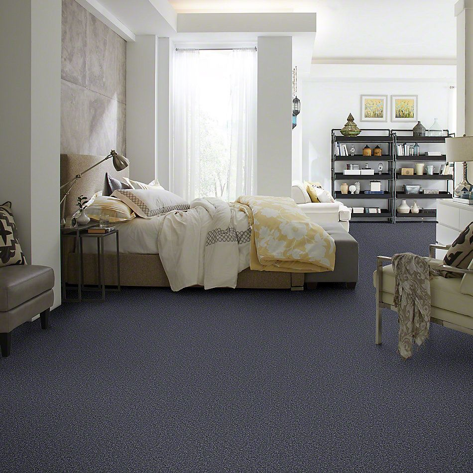 Shaw Floors Sandy Hollow II 15′ Cadet 00401_Q4276