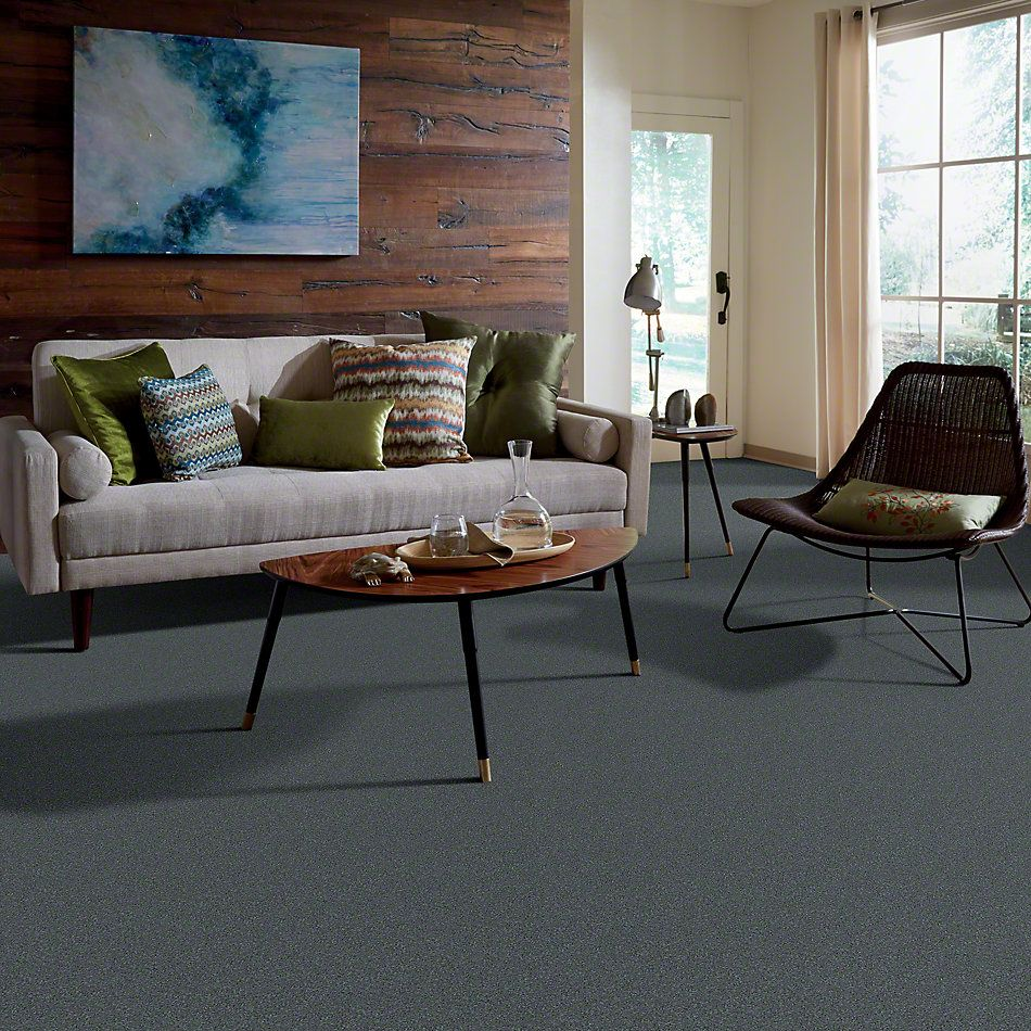 Shaw Floors Value Collections Invitation  Only I Net Tranquility 00401_E9026