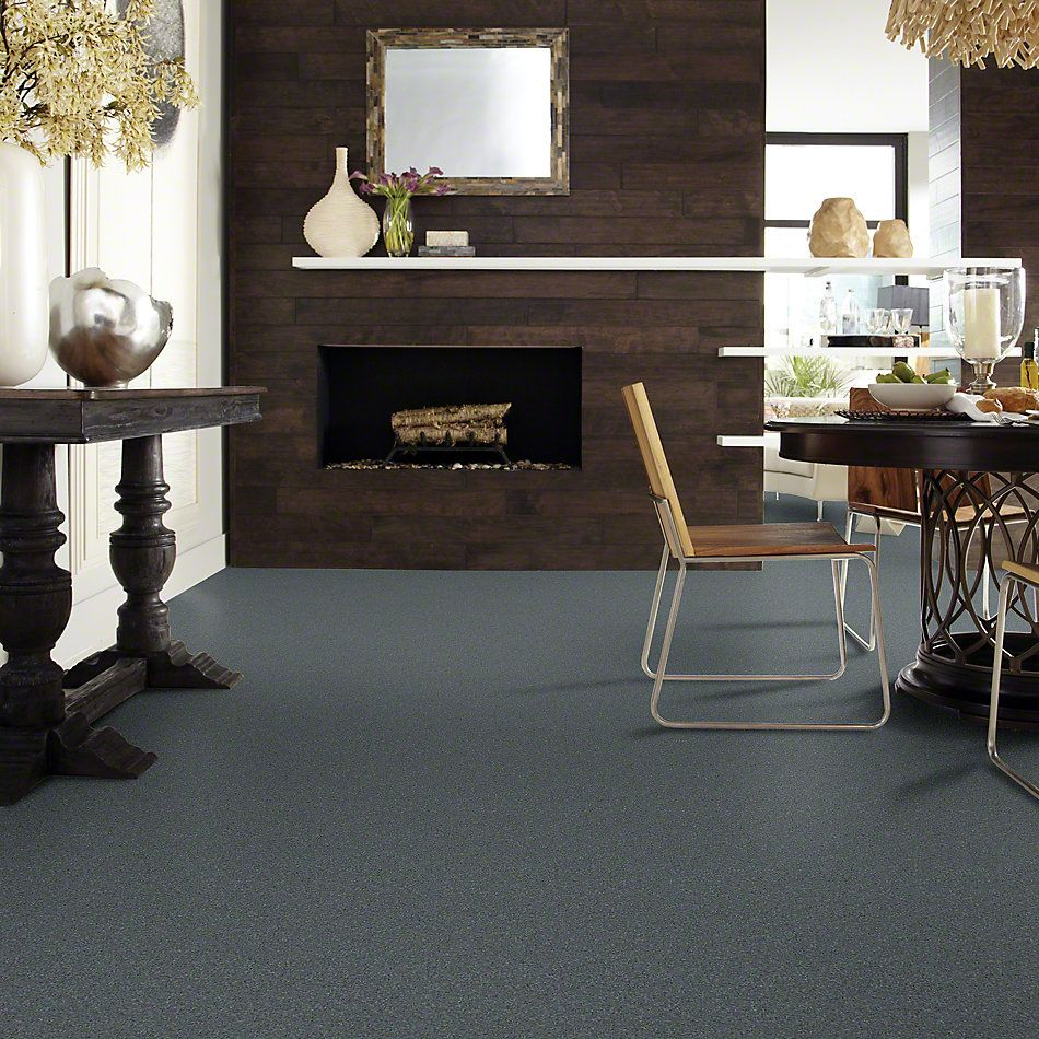 Shaw Floors Value Collections Invitation Only III Net Tranquility 00401_E9028