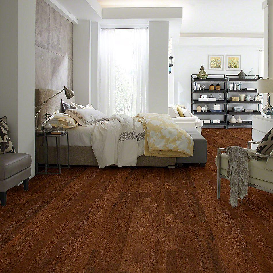Shaw Floors Richmond American Homes Richmond Reunion Saddle 00401_HA212