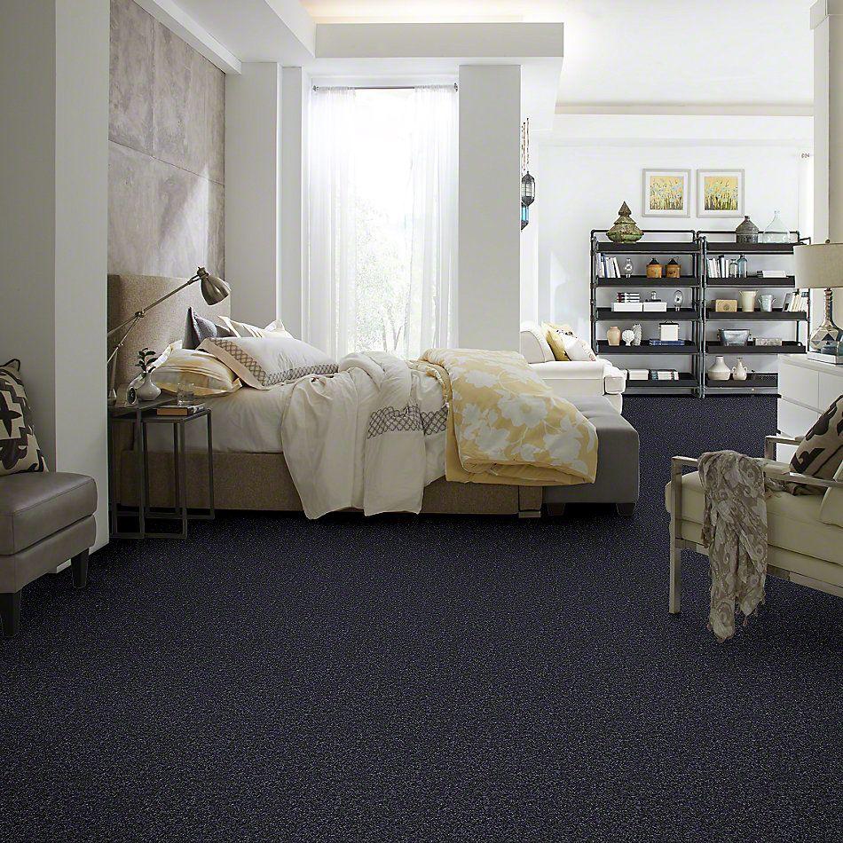 Shaw Floors Roll Special Xv463 Summer Night 00401_XV463