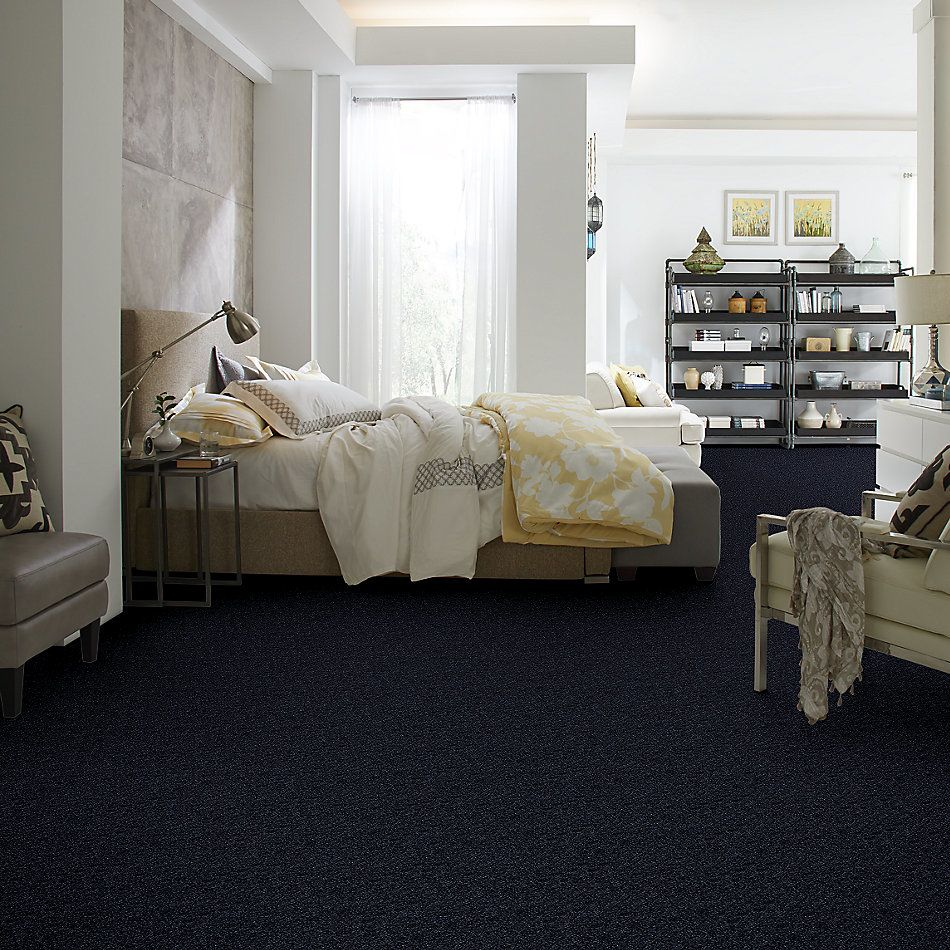 Shaw Floors Shaw Floor Studio Home News III 12′ Sapphire 00402_FS132