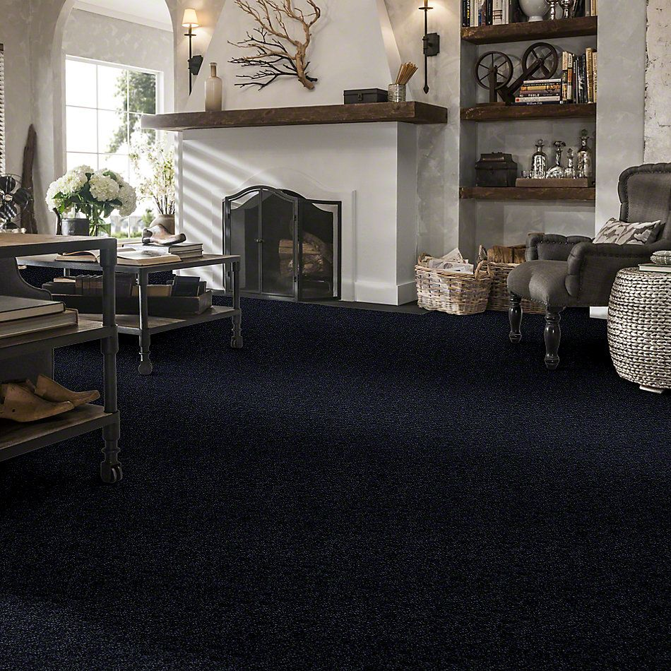 Shaw Floors Roll Special Xv409 Sapphire 00402_XV409