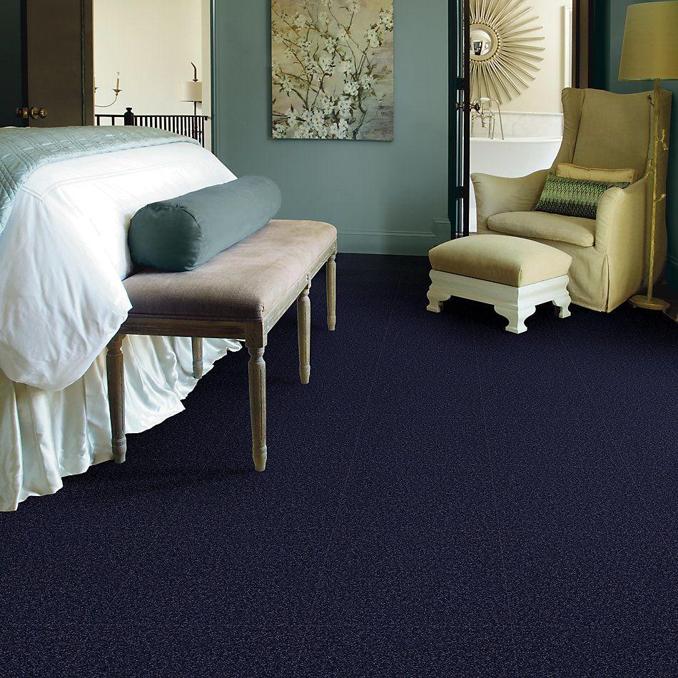 Shaw Floors Shaw Design Center Park Manor 15′ Indigo 00404_QC466