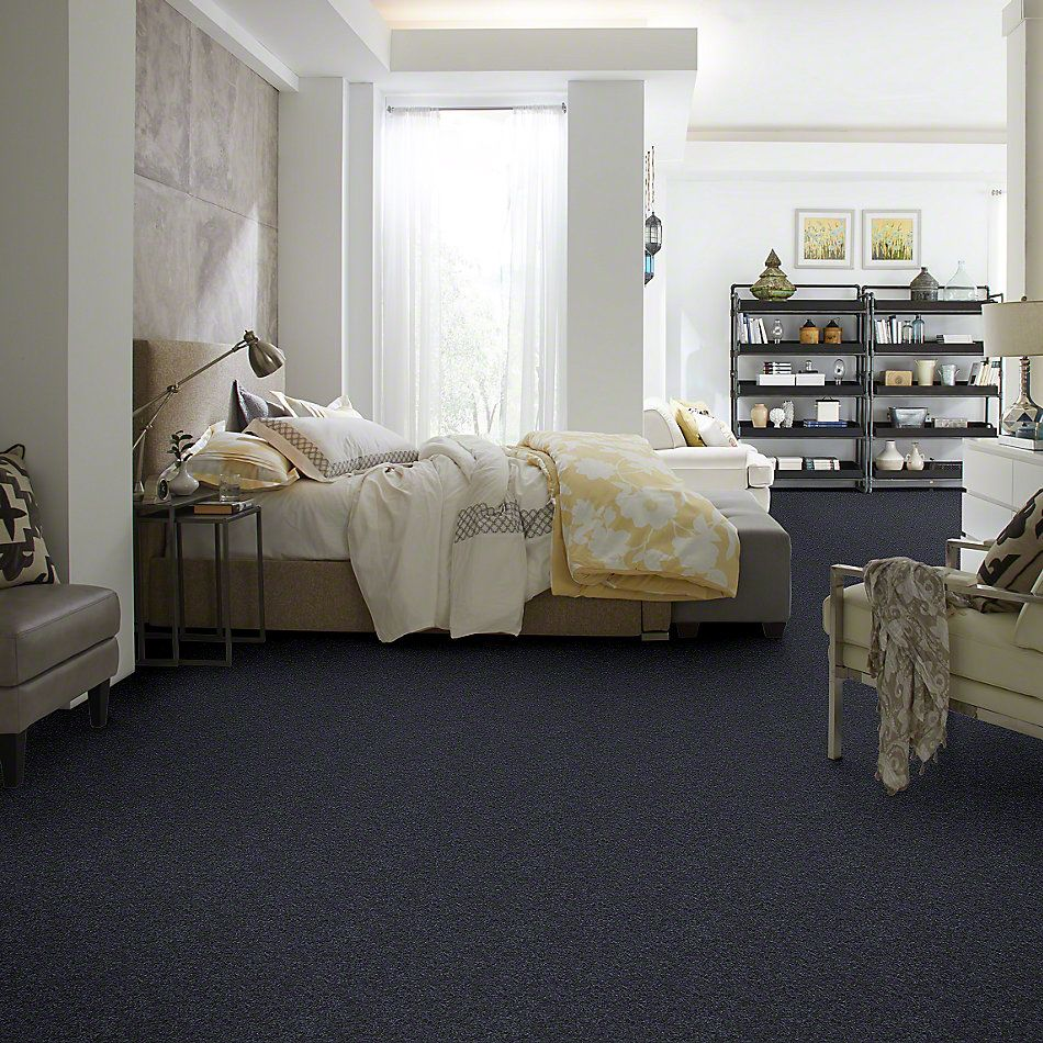 Shaw Floors Clearly Chic Bright Idea III Ink Blot 00407_E0506