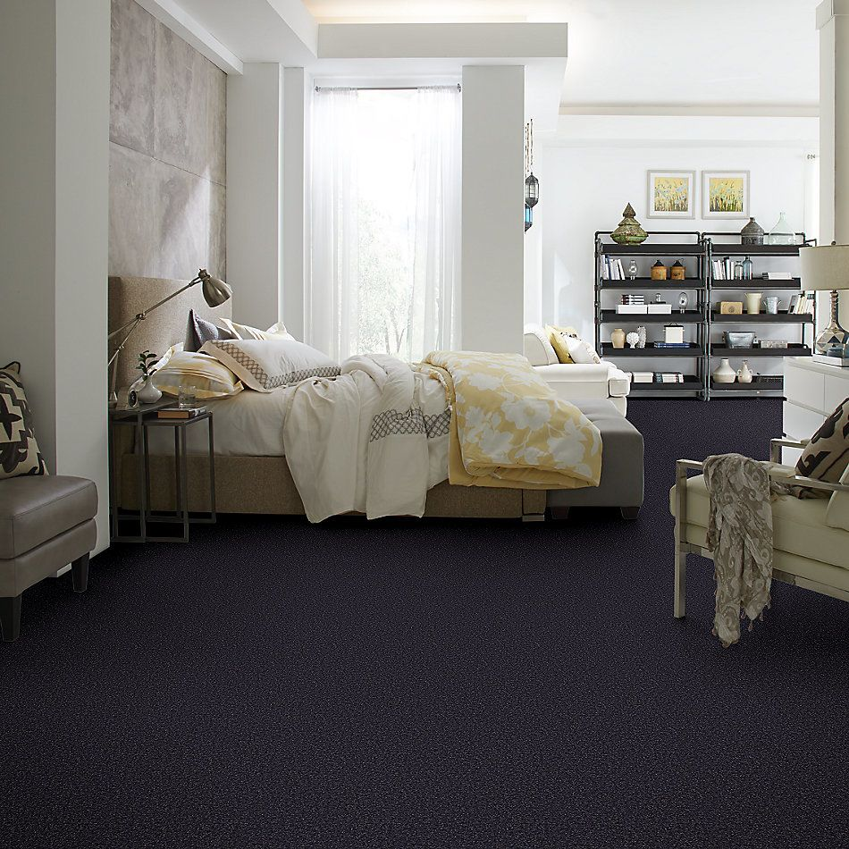 Shaw Floors Value Collections Passageway II 15 Net Midnight Sky 00407_E9621
