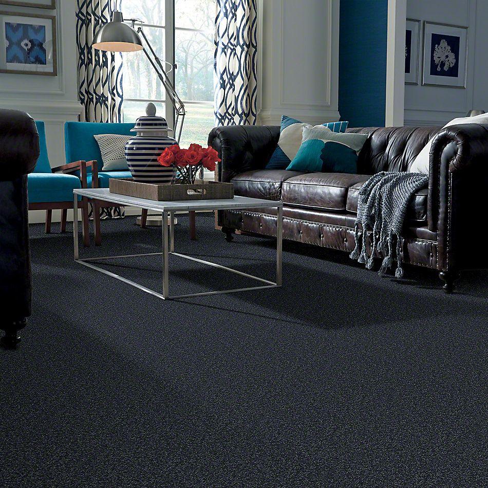 Shaw Floors Shaw Flooring Gallery Union City II 15′ Denim 00410_5304G