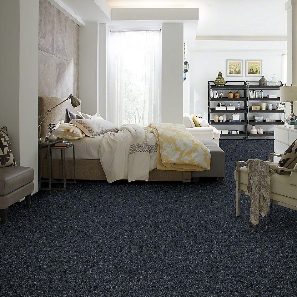Shaw Floors Queen Point Guard 15′ Denim 00410_Q4885