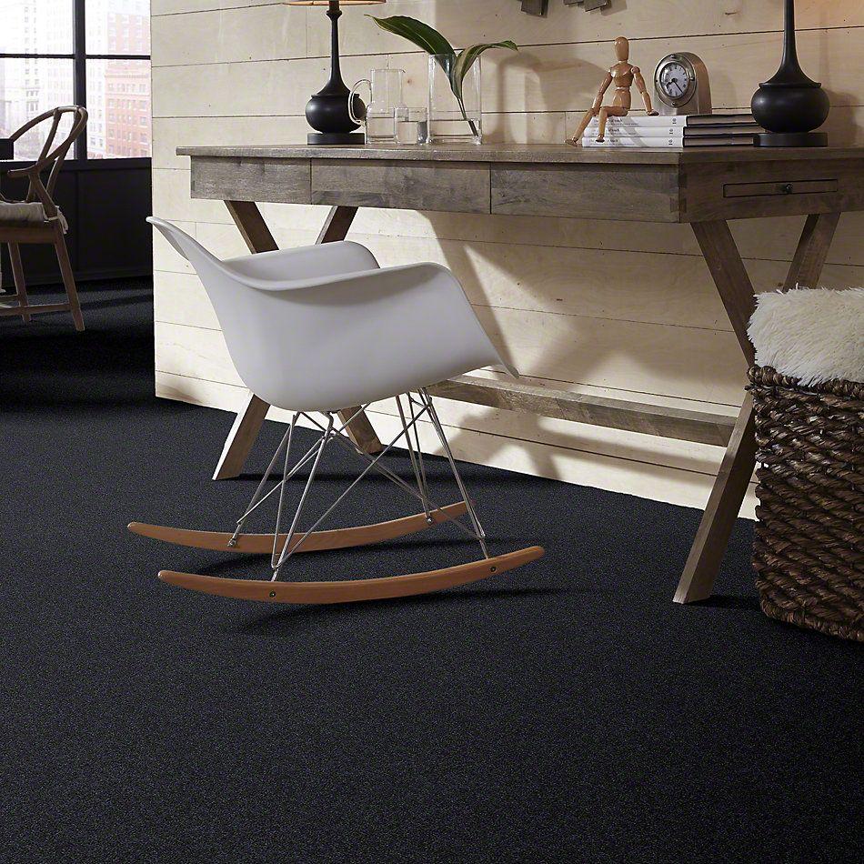 Shaw Floors Shaw Design Center Best Basics Indigo 00411_5C728