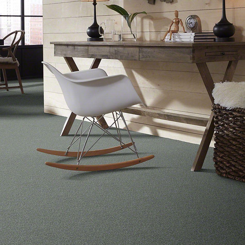Shaw Floors Shaw Flooring Gallery Canvas Refreshing 00412_5518G