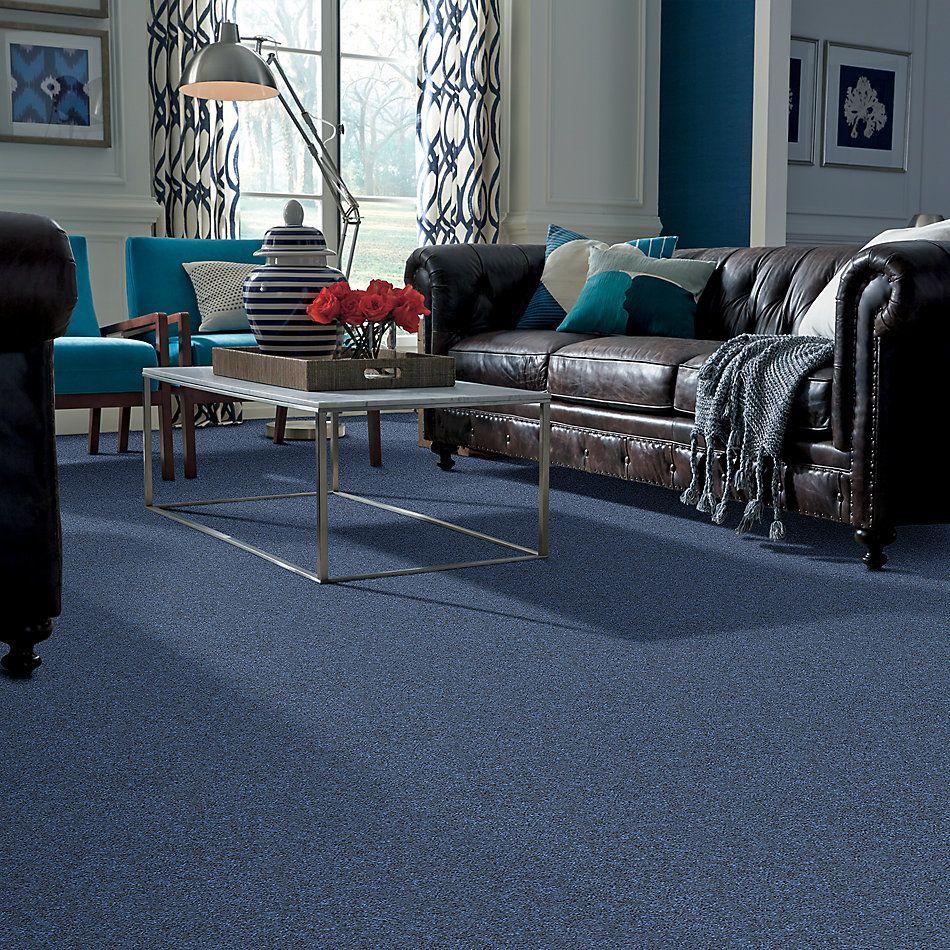 Shaw Floors Shaw Floor Studio Complete Hold II Lake Side 00413_FS155