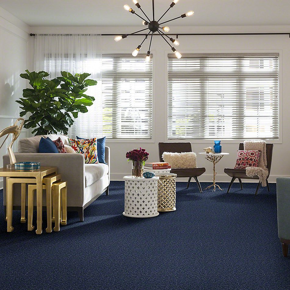 Shaw Floors Queen Roadster Benton Harbor 00420_Q0993