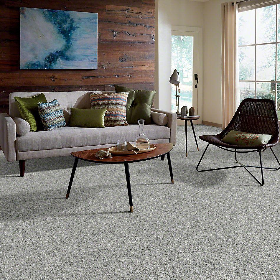 Anderson Tuftex American Home Fashions Hollister Winterscape 00420_ZZA15