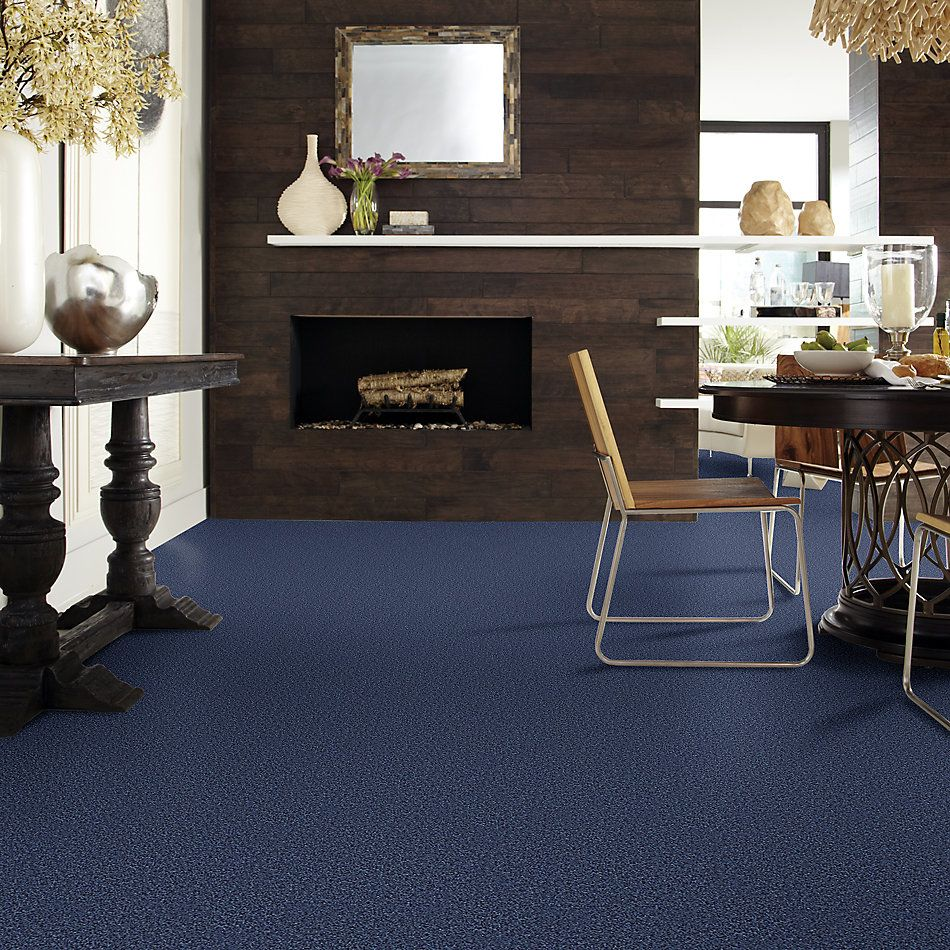 Shaw Floors Value Collections Wild Extract Net Indigo Mood 00421_E9461