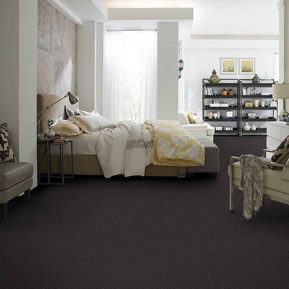 Shaw Floors Value Collections Sandy Hollow Cl Iv Net Dutch Boy 00422_5E512