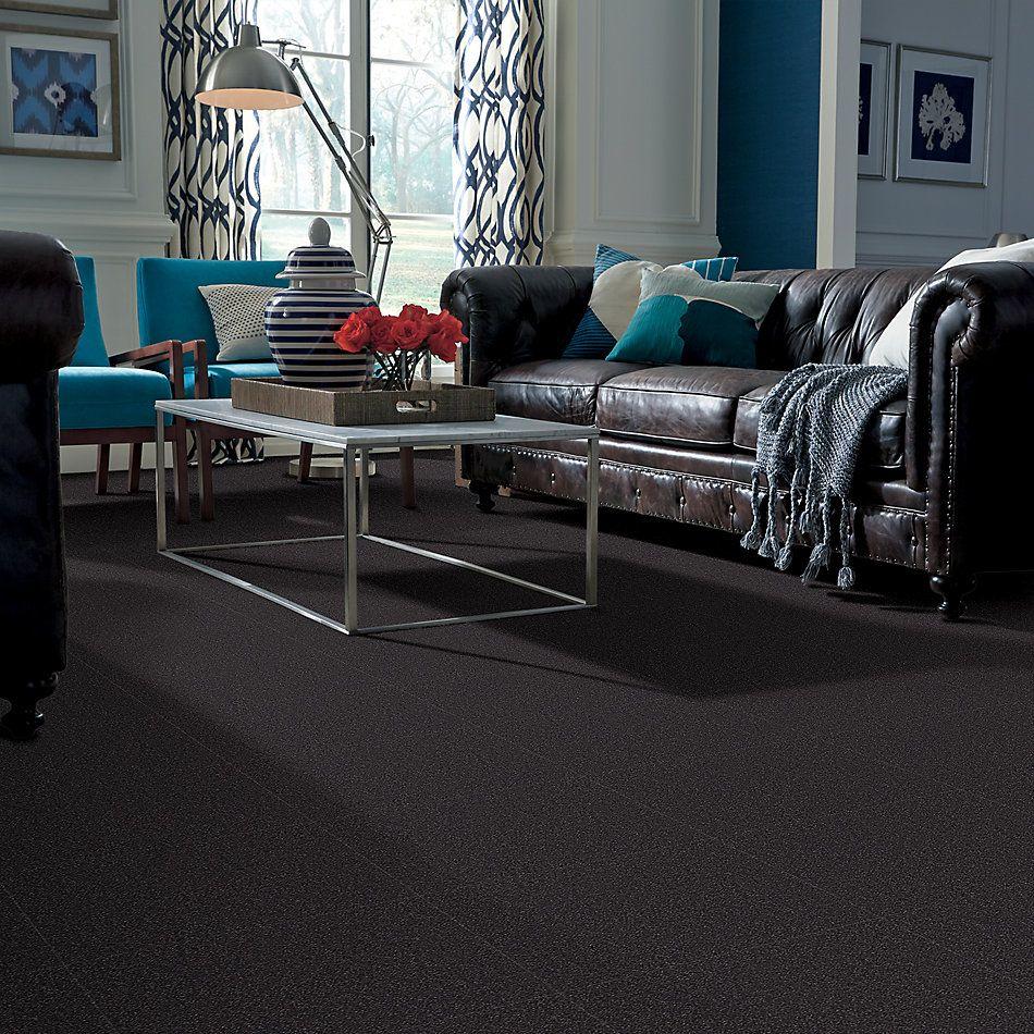 Shaw Floors Foundations Sandy Hollow Classic II 15′ Dutch Boy 00422_E0551