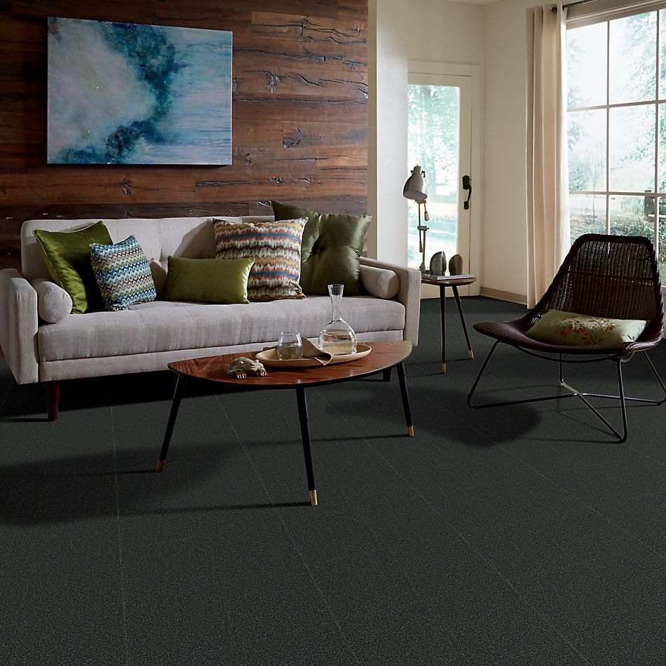 Shaw Floors Sandy Hollow Classic II 15′ Lagoon 00423_E0551