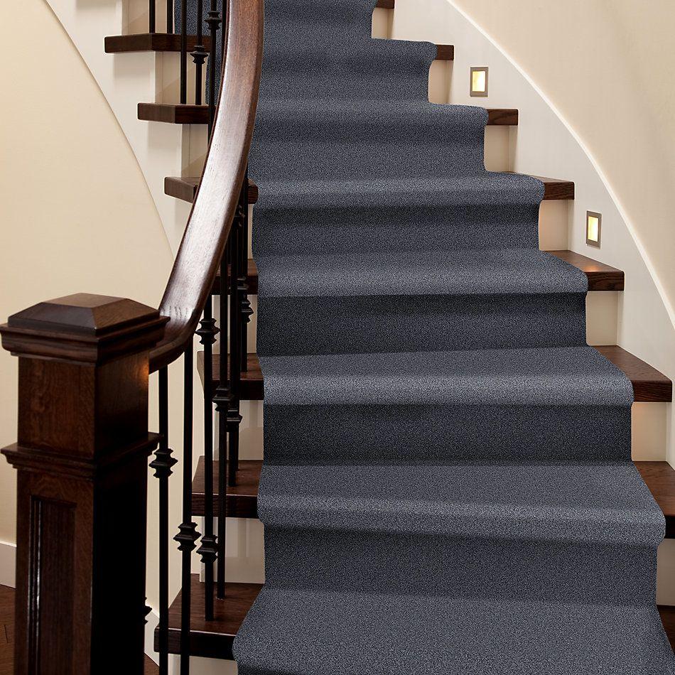 Shaw Floors Foundations Harmonious II Net Indigo Ink 00437_5E472