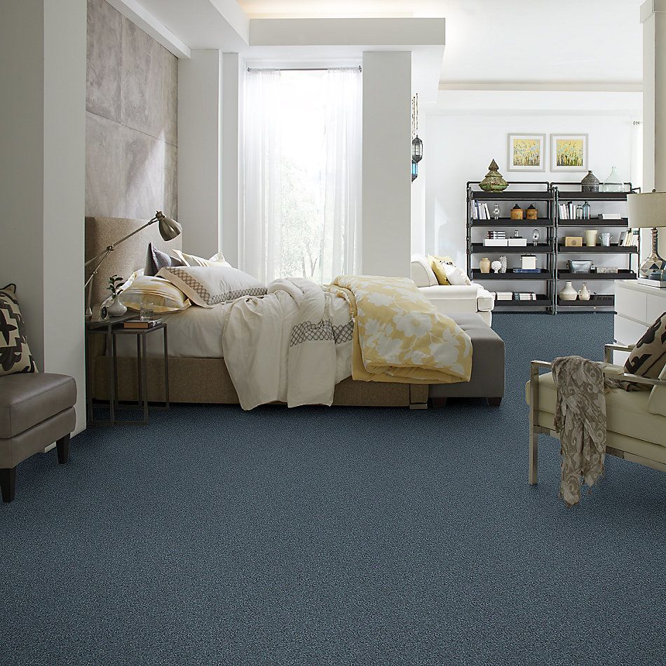 Shaw Floors Nfa/Apg Detailed Elegance III Old Blue Eyes 00450_NA334