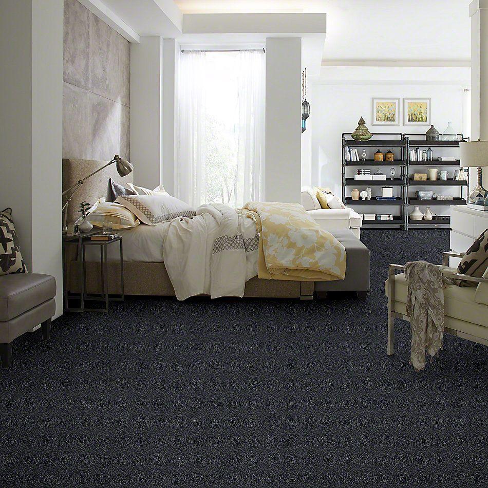 Shaw Floors My Choice I Indigo 00451_E0650