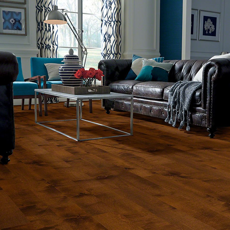 Shaw Floors St. Petersburg Surfside 00460_SA427