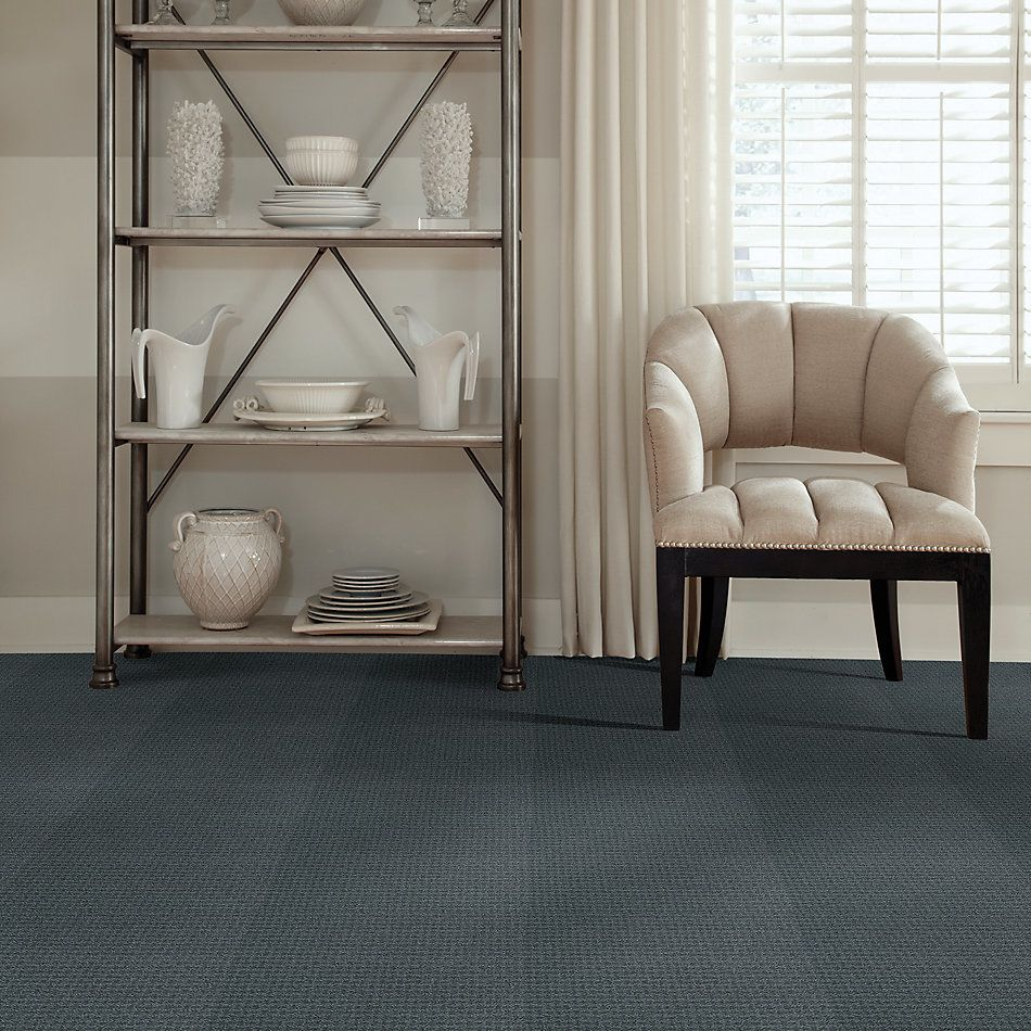 Shaw Floors Value Collections Complete Control Net Voyage 00480_E9775