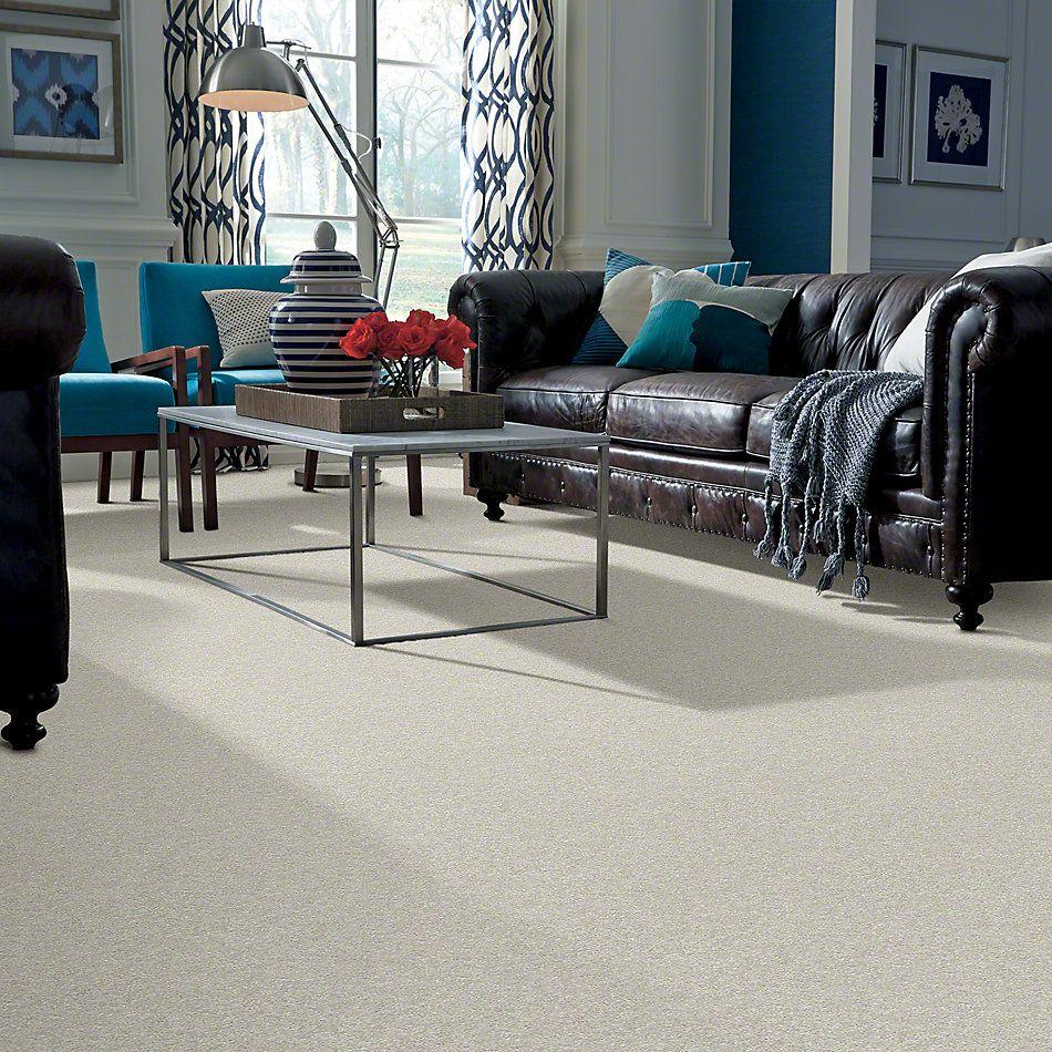 Shaw Floors SFA Vivid Colors II Light Fog 00500_0C161