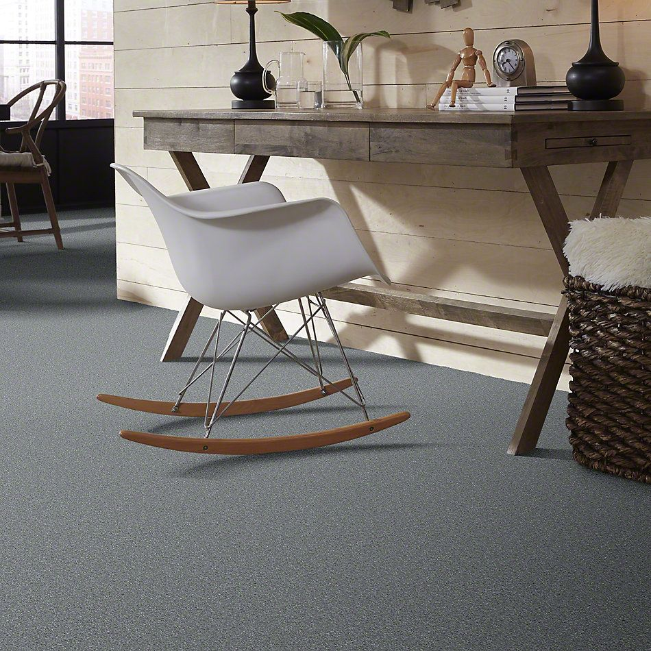 Shaw Floors Shaw Flooring Gallery Why Not Me Sterling 00500_5581G