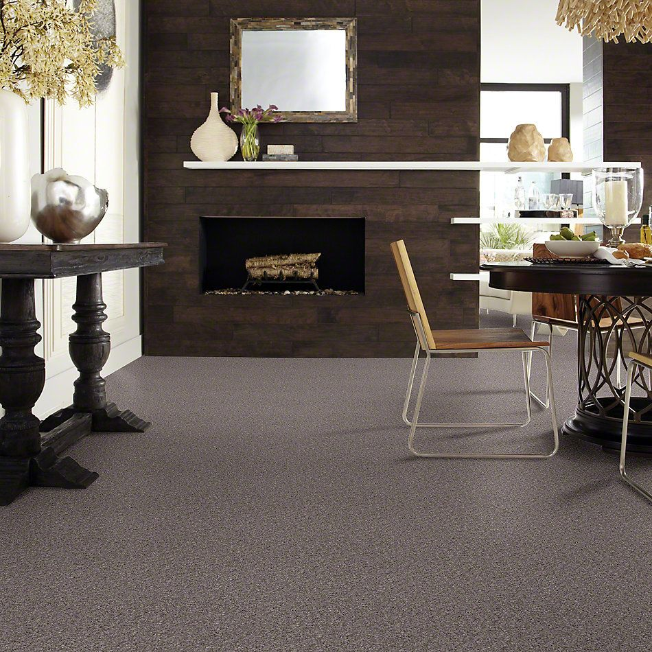 Shaw Floors Shaw Design Center Winters Home Silver Song 00500_5C582